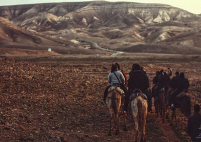 Horseback Riding, Negev Desert